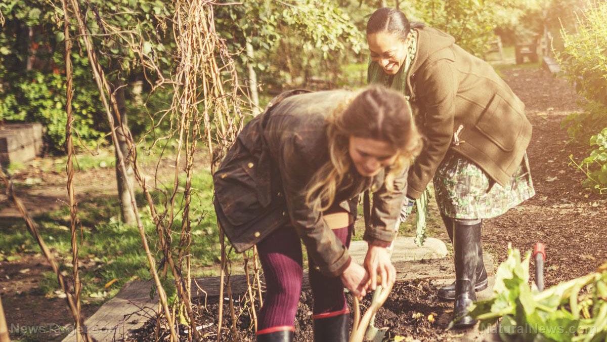 Extend your gardening season